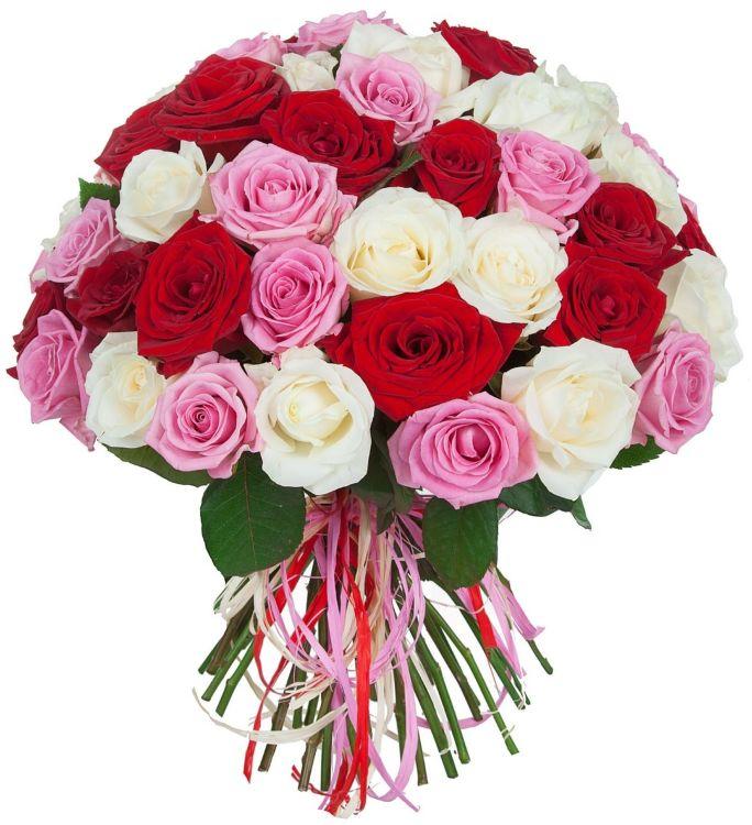 Розы кустовые купить дешево в москве
