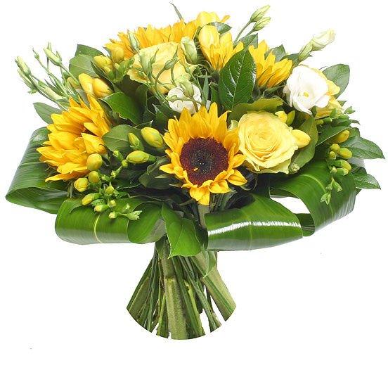 Цветы в цветочном магазине названия и фото