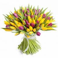 """Разноцветный букет из 101 тюльпана """"Яркие искры"""""""