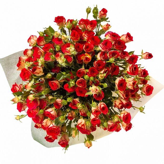Цветы дёшево тверь