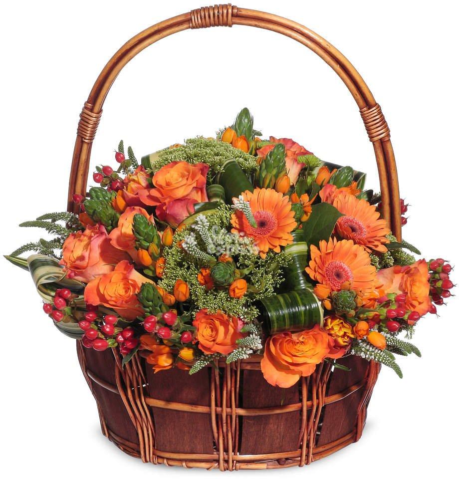 Красивые корзины с цветами картинки